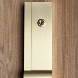 AP Door Knocker in Champagne on wood - Front copy.jpg